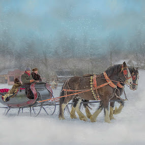 by Rich Reynolds - Transportation Other ( snowfall, antique sleigh, sleigh ride, winter, horses, sleigh, christmas, antique )