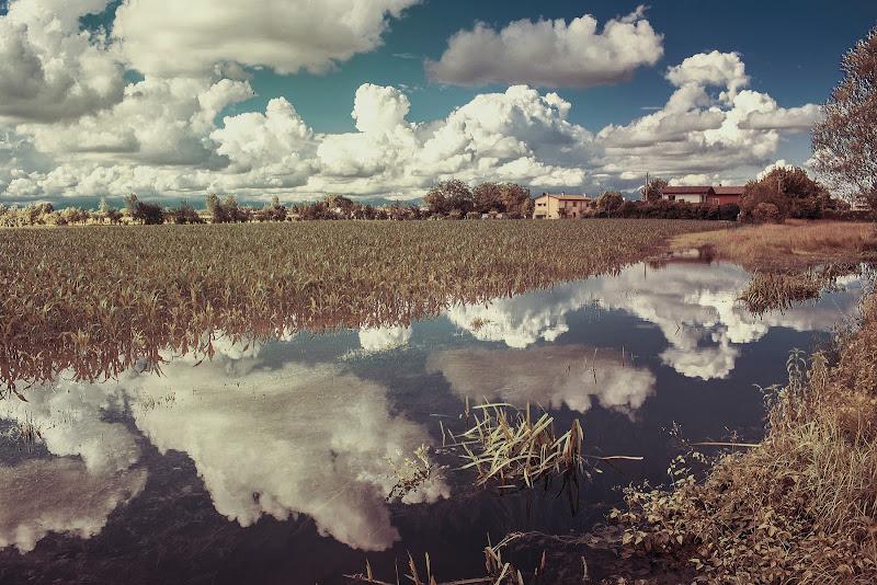 Terra e cielo una cosa sola di gloriapostuma
