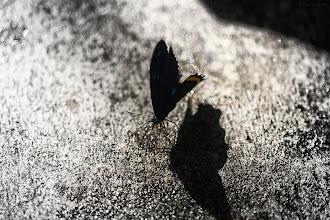 Photo: shadow of desire