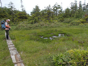 Photo: 稜線の池塘