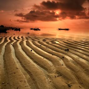 The Ripple Sand by Ina Herliana Koswara - Landscapes Beaches ( sand, patterns, ripple, sunrise, beach, morning )