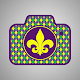 Mardi Gras Cam Download on Windows