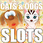Cats & Dogs Slots - Free Slot machines - Slotmania APK icon