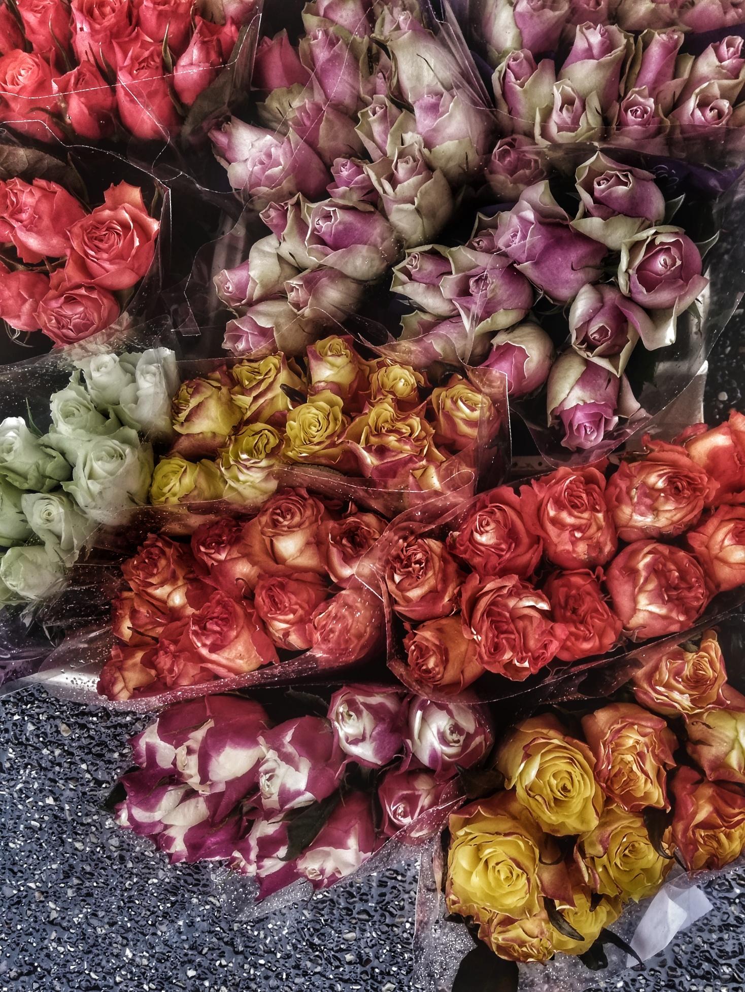 Febbraio, il mese dei piccoli gesti d'amore di Lulu77