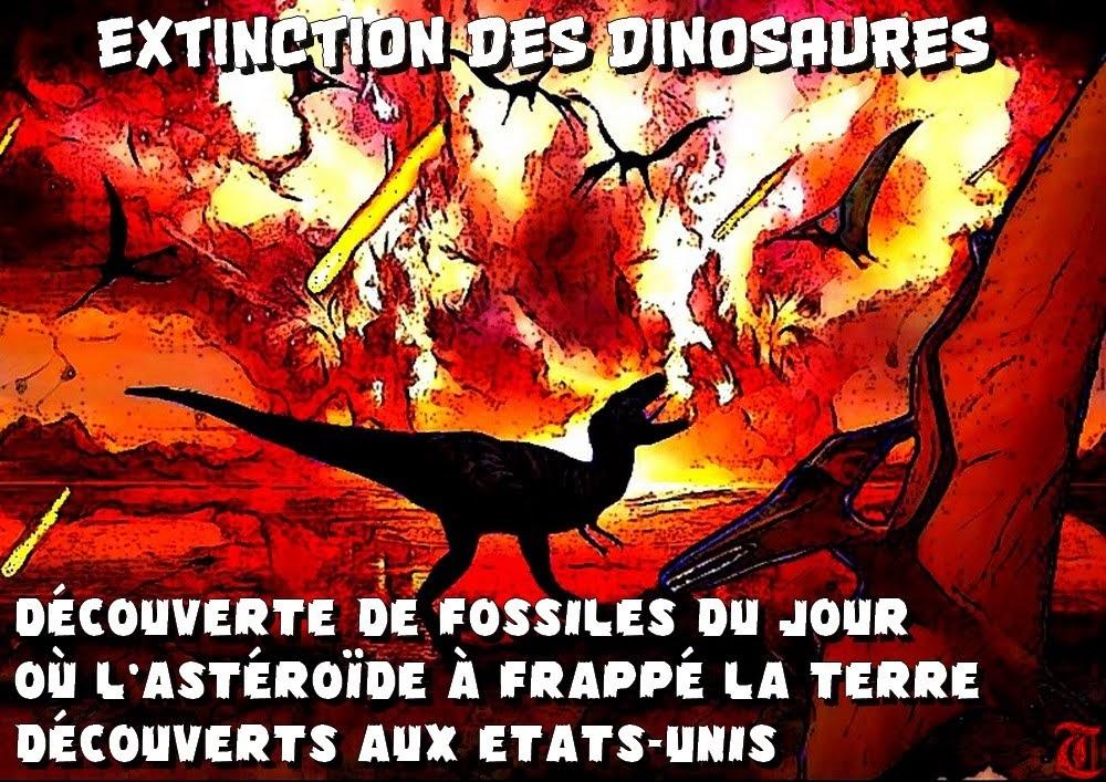https://sites.google.com/site/projectaliensresistance/les-etrange-creatures-dans-notre-monde/retrouver-de-l-adn-de-dinosaure-mode-d-emploi-par-claire-peltier-futura-sciences/extinction-des-dinosaures---decouverte-de-fossiles-du-jour-ou-l-asteroiede-a-frappe-la-terre-decouverts-aux-etats-unis