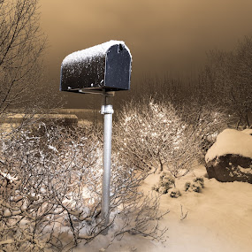 Mailbox by Edvald Geirsson - Landscapes Forests ( reykholt, iceland, snow, weather, trees, south, stones, mailbox )