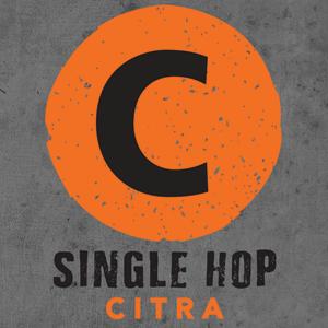 Logo of Hermitage Citra