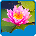 Lotus Live Wallpapers icon