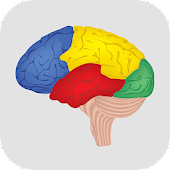 Brain Challenge - Game Trainer