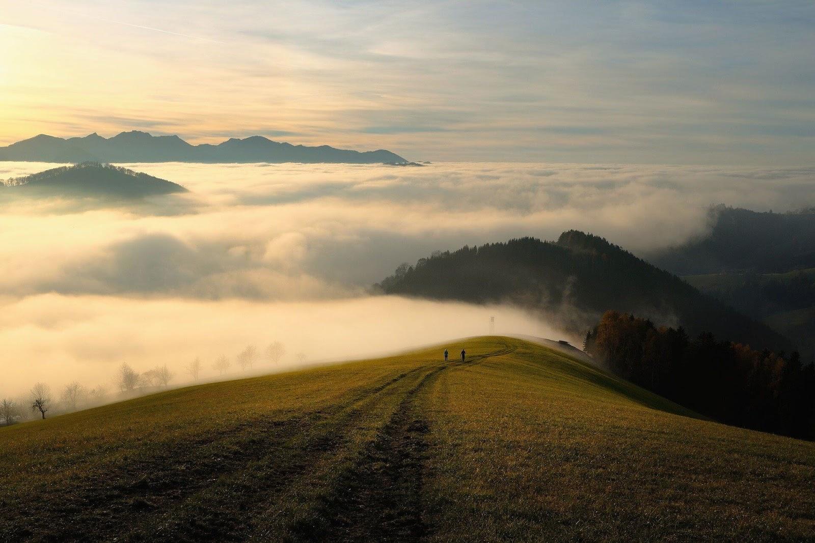 丘の上にある道の画像