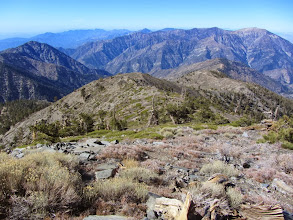 Photo: View west from Pine Mt. toward Iron Mt. (8006') (left) and Hawking Ridge (middle horizon), and Mt. Baden-Power (right) with the Mt. Wilson country on the distant horizon