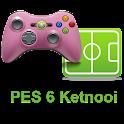 Online Pes 6 Ketnooi icon