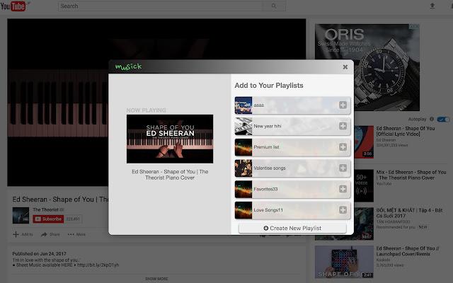 Muusick Playlists