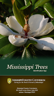 Mississippi Trees- screenshot thumbnail
