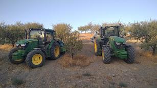 ASAJA confirma la reducción en un 60% de la cosecha de almendra en la provincia.