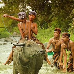 by Caraka Pamungkas - Transportation Other