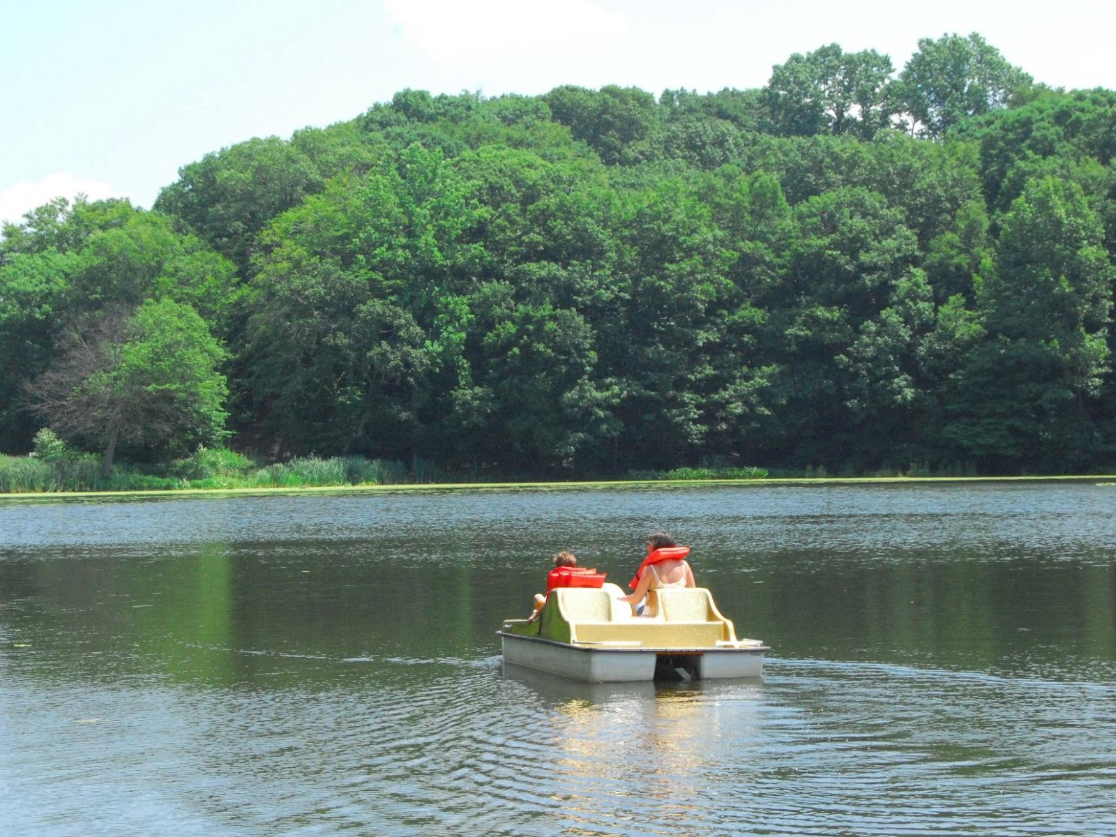 C:\Users\Family\Desktop\paddle-boats-echo-lake.jpg