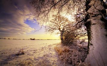 Photo: Winter Warmth