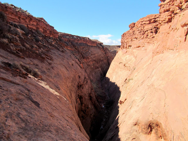 South Fork of Robber's Roost Canyon
