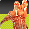 Muscle Tests 2 icon