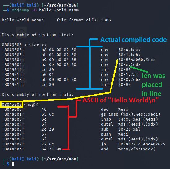 object dump output of our NASM Hello World program