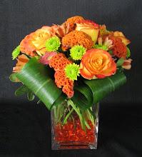 Photo: Green and Orange Gems, $45.00.