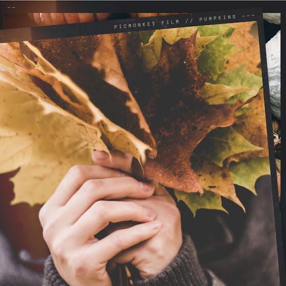 Autumn Foliage - Instagram Post Template