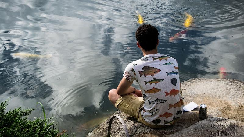 Pesce fuor d'acqua di Gilbo