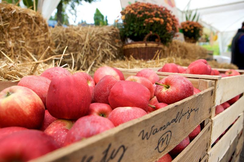 Holzkorb voller roter Äpfel von den Streuostwiesen