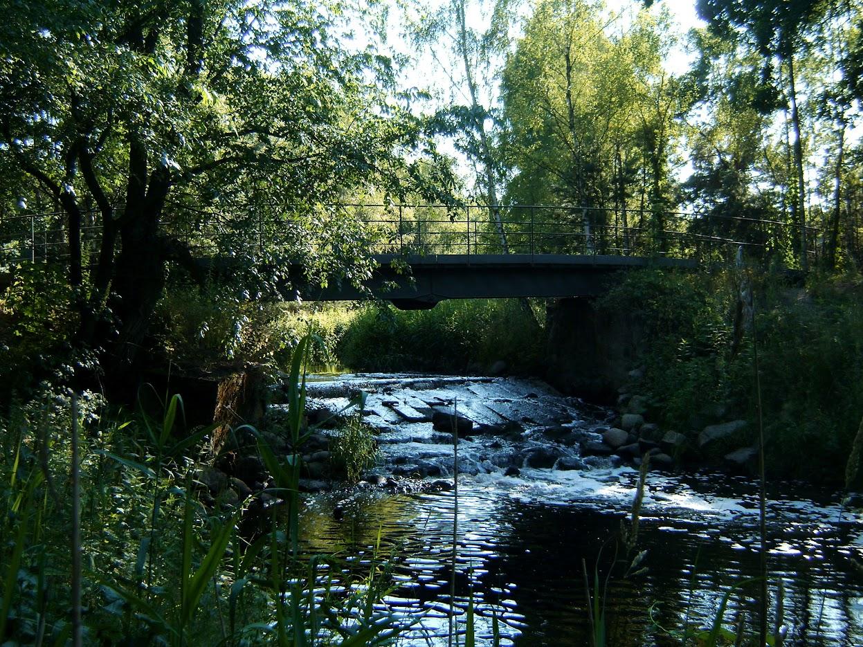 most w Radziborzu
