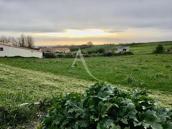 terrain à Chenac-Saint-Seurin-d'Uzet (17)
