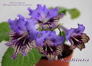 Photo: Kahinta