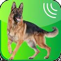 Dog Whistle, Trainer 2016 icon