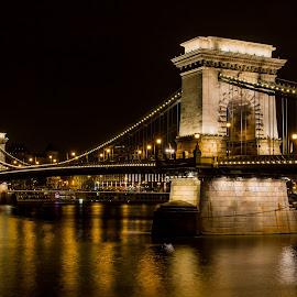 by Mario Horvat - Buildings & Architecture Bridges & Suspended Structures ( lamps, chain bridge, night, budapest, chainbridge, lanchid, bridge, lights, hungary,  )