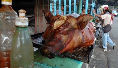 Photo: pig in santiago de cuba. Tracey Eaton photo.