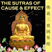 Cause&Effect Sutra 三世因果经