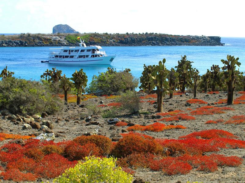 Photo: Galapagos yacht at South Plazas