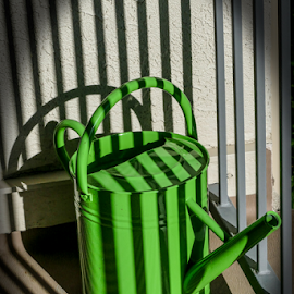 Shadows on Watering can by Gwen Paton - Artistic Objects Other Objects ( can, watering, lime green )