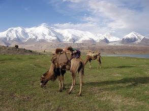Photo: Kongur Shan, A Kongur Shan vonulata, Kongur Shan, jégmező, Ujgúria jégmezői