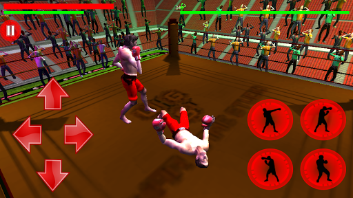 Virtual Deadly Boxing 3D