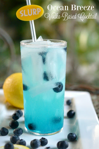 BLUEBERRY JUICE COCKTAIL RECIPES