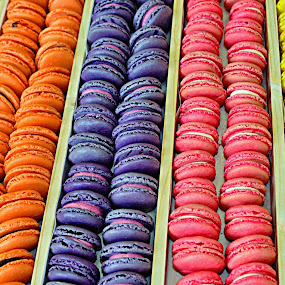 Macaroons by Sue Bernhard - Smith - Food & Drink Candy & Dessert ( colourful, food, macaroons, colours,  )