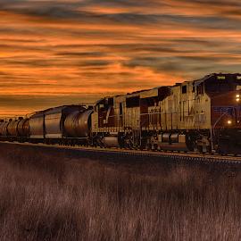 The morning train by Ryan Trullinger - Transportation Trains ( grasses, clouds, railroad tracks, dawn, train )