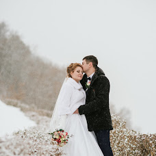 Wedding photographer Artem Pavlenko (ArtPauls). Photo of 31.01.2017