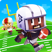 Marshawn Lynch Blocky Football‏