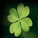 Your lucky clover icon