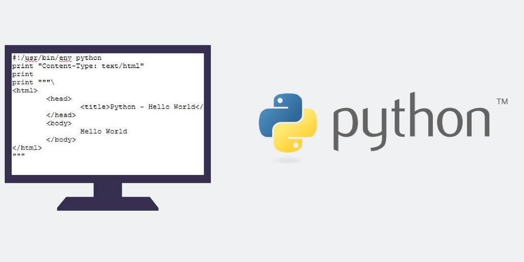Python Security Vulnerabilities and Language Overview