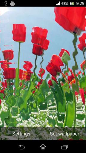 玩免費娛樂APP 下載Tulip Ripple Flower app不用錢 硬是要APP