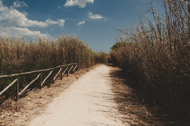 sentieri e nuvole di alessia campolo