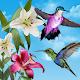 Birds Live Wallpaper (app)